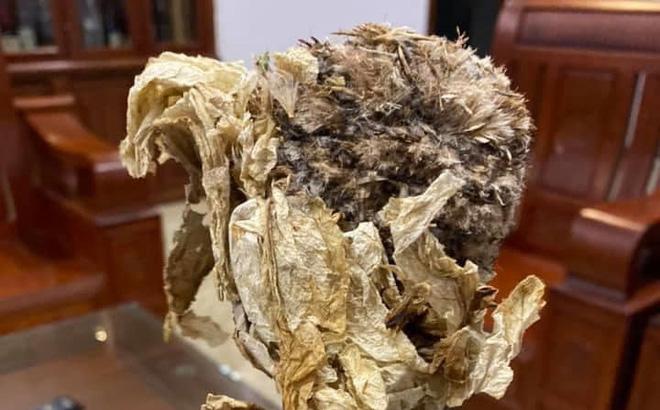 Bông hoa cổ tích giúp bổ thận tráng dương, 7 năm mới nở, được rao bán 100 triệu đồng/kg - Ảnh 1.
