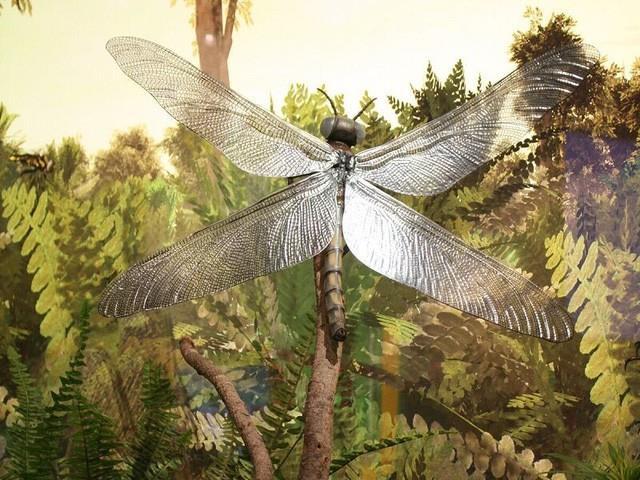 Những sinh vật siêu to khổng lồ từng tồn tại trên Trái Đất từ trước tới nay - Ảnh 1.