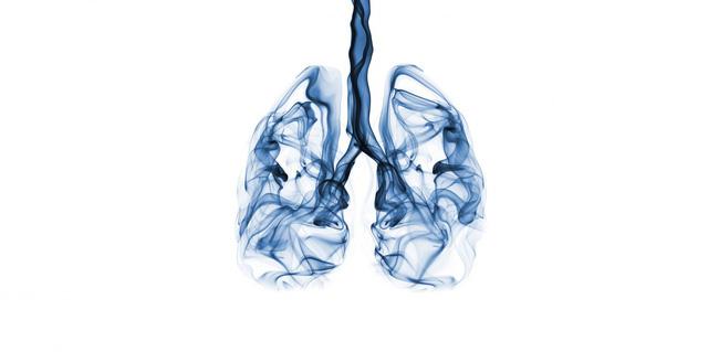Khi môi trường luôn ô nhiễm và bệnh COVID-19 vẫn rình rập, hãy nhớ 3 việc cần tránh xa và 9 việc cần làm để phổi luôn khỏe mạnh - Ảnh 3.