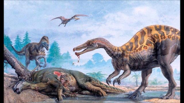 Top 5 điều thú vị xoay quanh Spinosaurus - kẻ săn mồi đáng sợ ngang cơ cả T-REX - Ảnh 8.
