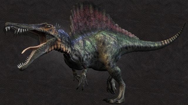Những sinh vật siêu to khổng lồ từng tồn tại trên Trái Đất từ trước tới nay - Ảnh 8.