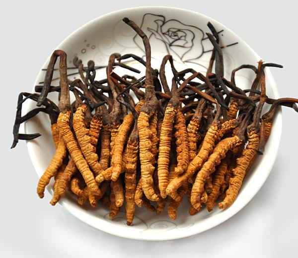 4 món ăn bổ thận cường dương nổi tiếng từ cổ chí kim: Nguyên liệu dễ kiếm, chữa nhiều bệnh - Ảnh 1.