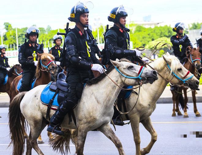 [Ảnh] Ấn tượng hình ảnh lực lượng Cảnh sát cơ động Kỵ binh trong lễ ra mắt - Ảnh 5.