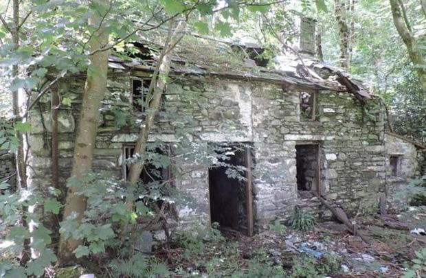 Bỏ 2 triệu mua nhà gạch tồi tàn, người phụ nữ cải tạo suốt chục năm khiến ngôi nhà tăng giá hơn 7000 lần với diện mạo mới đáng kinh ngạc - Ảnh 1.