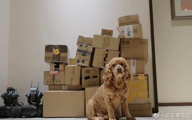 Vợ chủ tịch Taobao khoe hơn 100 đơn hàng mua trong những ngày ẩn cư sau khi tố chồng ngoại tình khiến người ủng hộ thất vọng - Ảnh 2.