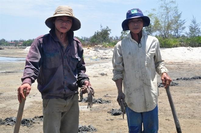 Lợi nhuận cao, khiến nhiều hộ dân ở các tỉnh đổ về TT- Huế khai thác giun biển.