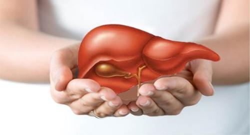 6 dấu hiệu gan bị quá tải độc tố cần giải độc ngay