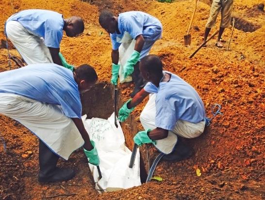 Nguyên nhân nào khiến Ebola trở thành đại dịch?