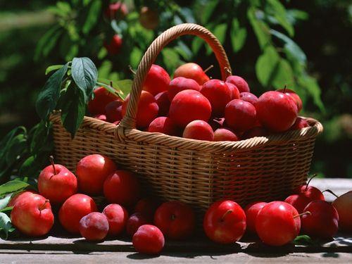 Mẹo hữu dụng giúp rửa trôi tối đa hóa chất trong hoa quả 2