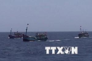 Tàu cá của ngư dân Việt Nam, (Ảnh minh họa: Công Định-Hữu Trung/TTXVN)
