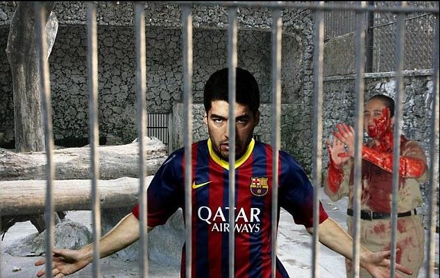 Không có tổ chức bị cấm: Luis Suartez sẽ được công bố tại vườn thú địa phương, theo virus này