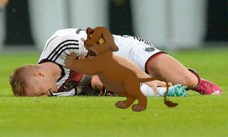 Ngay cả sư tử con cũng thương Reus