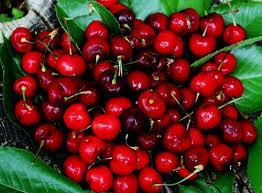 Mẹo hay phân biệt hoa quả Trung Quốc trà trộn thành hoa quả sạch 2
