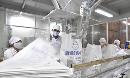 Ông Đặng Văn Thành nuôi bò Kobe Made in Vietnam