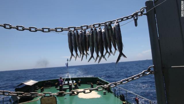 Cảnh phơi cá khô dưới ánh mặt trời nóng gắt để phục vụ những bữa ăn xa đất liền của tàu Cảnh Sát Biển Việt Nam.
