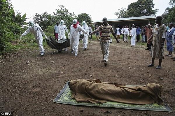 Hình ảnh đáng sợ khi vi rút độc tấn công loài người. (ảnh Reuter)