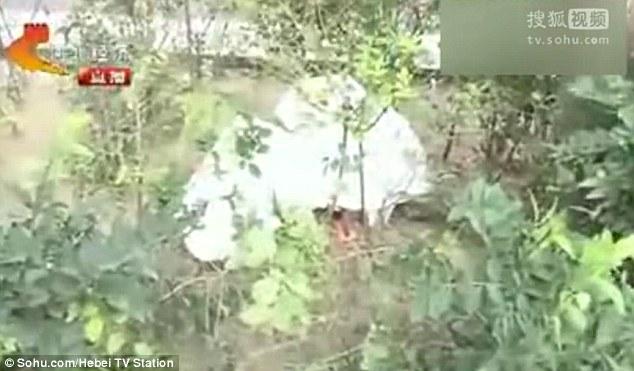 Đứa trẻ đã tử vong sau khi bị bỏ rơi trong bụi cây.