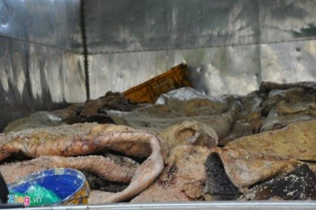 1,2 tấn da trâu đang trong quá trình phân hủy, bốc mùi trên xe tải được phát hiện tháng 8/2015. Được biết, số da này được đưa ra Hà Nội tiêu thụ. Ảnh: Zing.vn