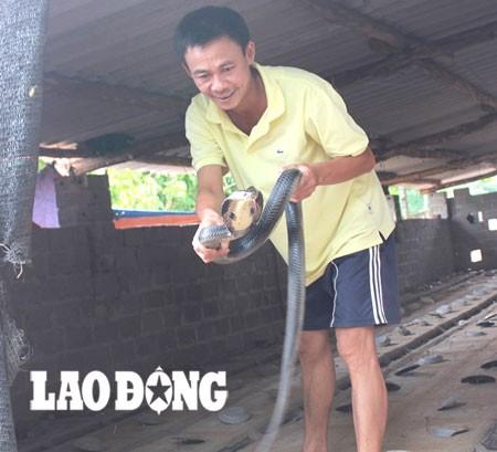 Ông Đồng Văn Phong bên trại nuôi rắn. Ảnh: Lao động