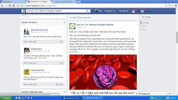 """Trang facebook """"Cần sa y tế"""" chia sẻ thông tin chữa bách bệnh từ cần sa."""