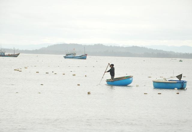 Lưới mành đánh bắt tôm nhí dày đặc trên biển. Ảnh: Báo Quảng Ngãi