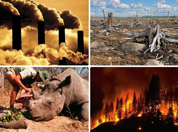 Đại tuyệt chủng thứ 6 do con người gây ra.