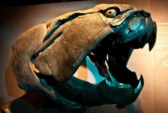 top 10 động vật thời tiền sử quái ác nhất dưới biển 8