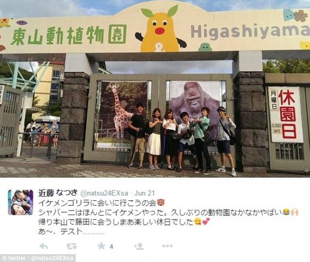 """Một du khách khác đăng bức ảnh chụp tại vườn thú Higashiyama cùng với những người bạn kèm theo bình luận: """"Chúng tôi đang tới thăm chú khỉ đột Shabani điển trai... đây là một kỳ nghỉ rất thú vị""""."""
