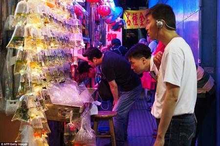 Ben trong cho ca canh lung linh sac mau o Hong Kong