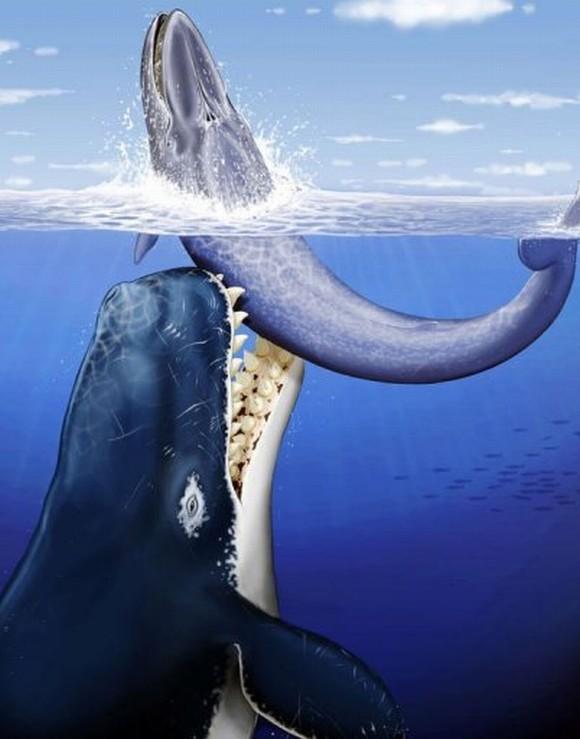 top 10 động vật thời tiền sử quái ác nhất dưới biển 2
