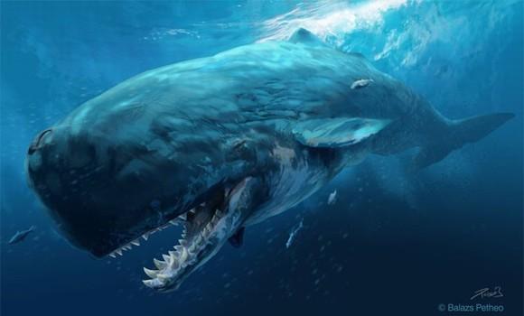 top 10 động vật thời tiền sử quái ác nhất dưới biển 1