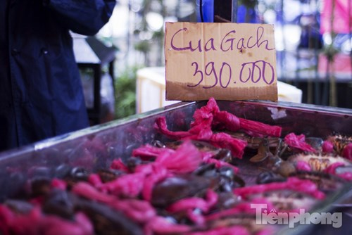Đặc sản cua biển Cà Mau được mệnh danh ngon nhất nước.