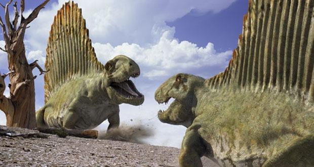Dimetrodon là một loài bò sát thời tiền sử, từ thời kỳ Permian (khoảng 309-233 triệu năm trước đây).