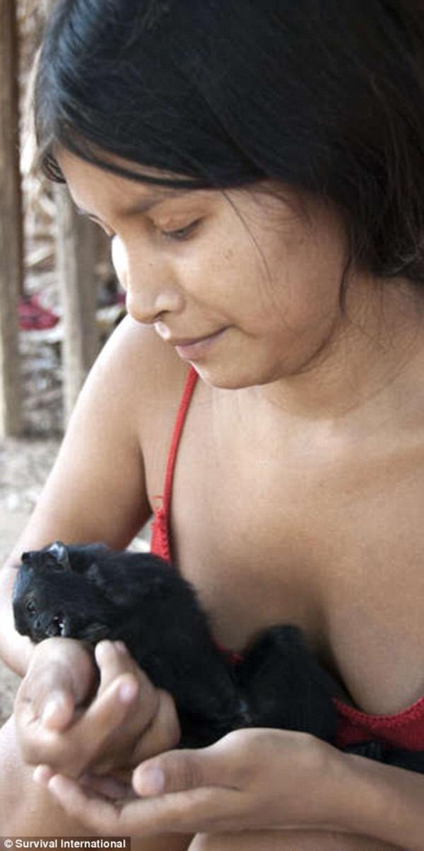 Động vật hoang dã được chăm sóc như đứa con nhỏ của phụ nữ Awa.