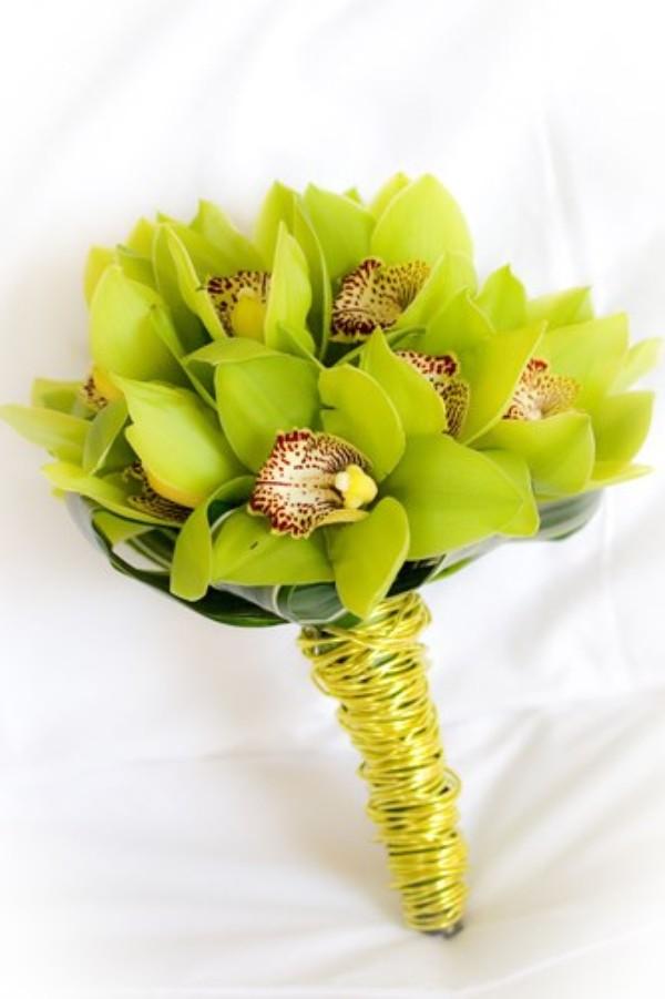 Loài hoa phong lan đắt đỏ này 5 năm mới mới nở một lần và cũng rất khó chăm sóc.