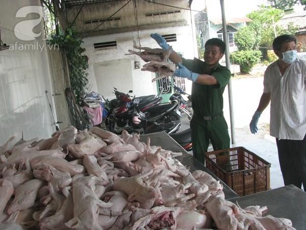 Nhiều lò giết mổ heo không cógiấy phépgiết mổ, dùng thuốc an thần, chất cấm tiêm vào thịt heo đã bị phát hiện trong thời gian qua.