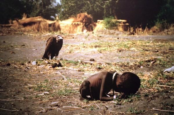 Trái đất có thể phải hứng chịu nạn đói khủng khiếp nhất từ trước đến nay (Ảnh minh họa)