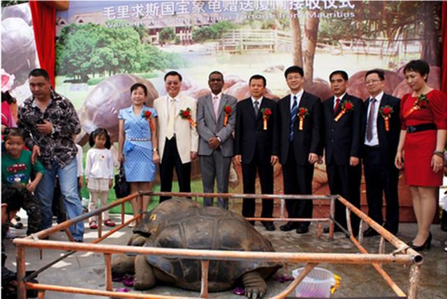 Lễ trao tặng đôi rùa quý Aldabra cho sở thủ Haichang.