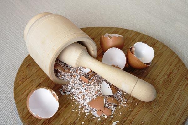 vỏ trứng, mẹo hay, cà phê, côn trùng đốt
