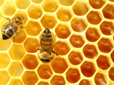Chất này ăn mòn lớp ngoài kim loại và làm tăng thêm hàm lượng kim loại trong mật ong, làm mật biến chất.