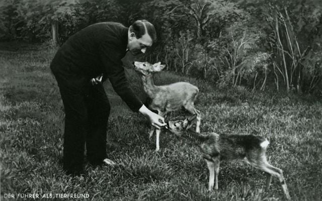 Vị quốc trưởng đang cho thú rừng ăn, trong một tấm hình được Heinrich Hoffmann chụp lại