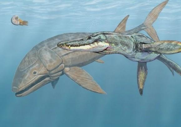 top 10 động vật thời tiền sử quái ác nhất dưới biển 15