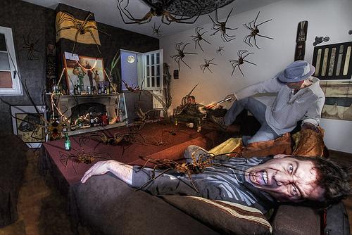 Bạn có phải là người sợ nhện?