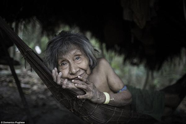 Bộ lạc Awa buộc phải sống nay đây mai đó để tránh bị tuyệt chủng.