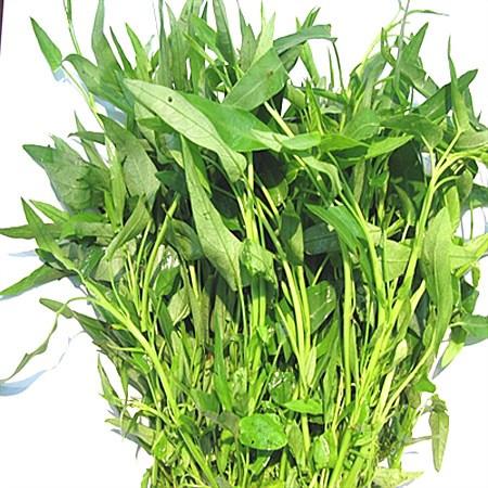 Theo khuyến cáo của Cục bảo vệ thực vật – Bộ Nông nghiệp và phát triển nông thôn, rau muống dẫn đầu trong nhóm rau ăn lá có nguy cơ gây ngộ độc thực phẩm cao.