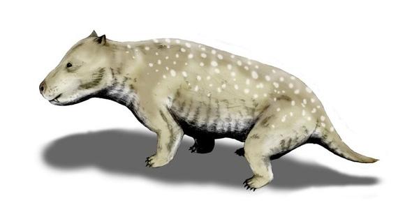 Cynodonts - thủy tổ của loài chó hiện nay bắt đầu xuất hiện vào giai đoạn hậu khủng long