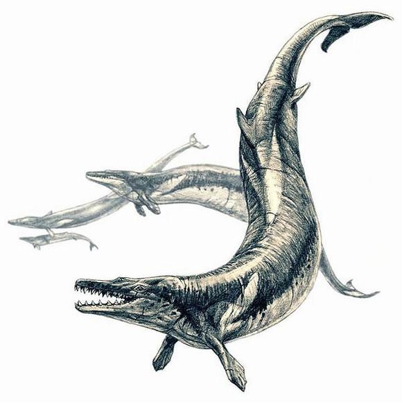 top 10 động vật thời tiền sử quái ác nhất dưới biển 13