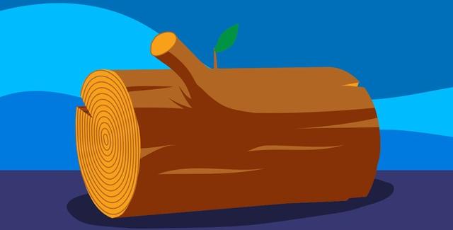 iPhone 6S sử dụng năng lượng từ gỗ có thể hoạt động trong 12 tiếng