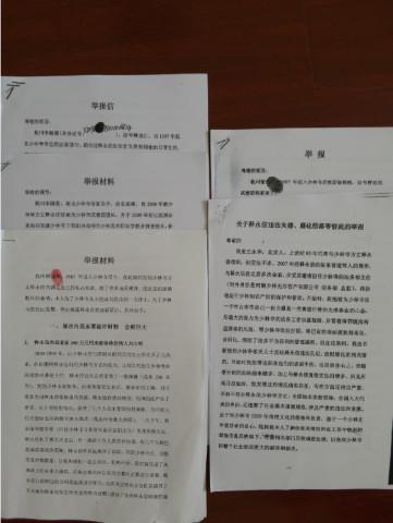 Các tài liệu do 6 đệ tử cũ của Thiếu Lâm Tự trình báo lên cơ quan hữu quan của Trung Quốc.