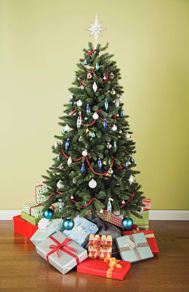 Cây thông Noel là một biểu tượng không thể thiếu trong mùa Giáng sinh nhưng hãy thận trọng với các vấn đề sức khỏe mà nó có thể gây ra cho con người.